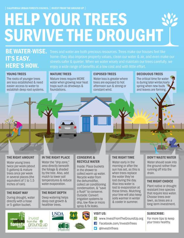 Drought-infographic (1)